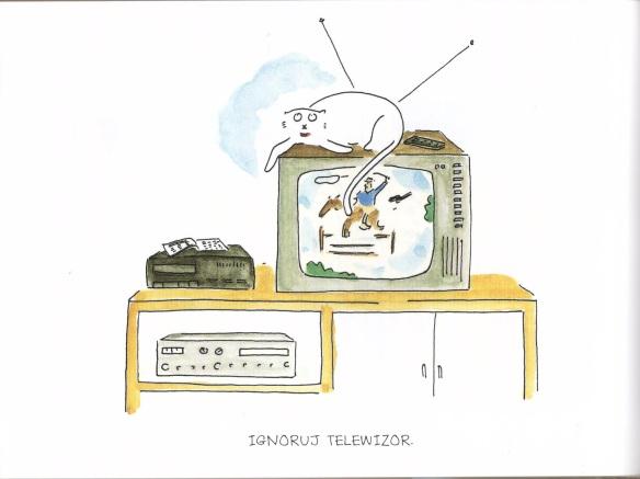 Ignoruj telewizor